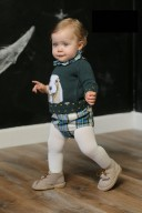 Baby Green Spaniel Sweater & Tartan Shorts Set